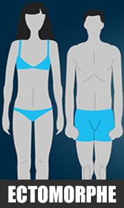 profil-ectomorphe