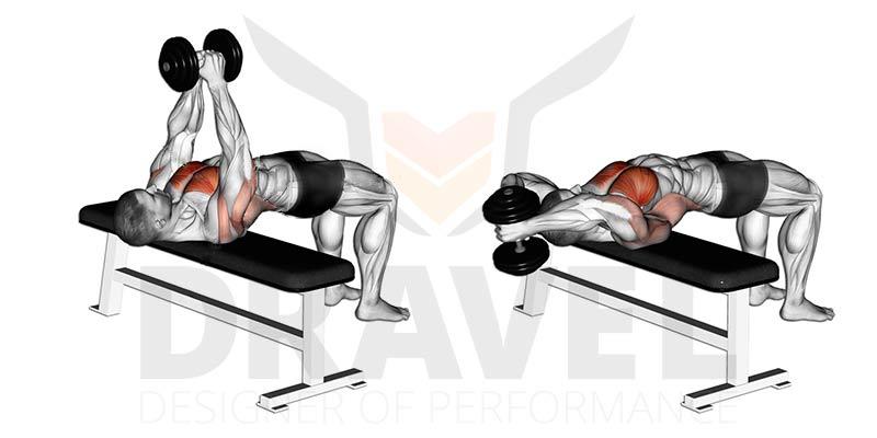 Muscler Les Pectoraux Les Meilleurs Exercices Pecs En Musculation Dravel Dravel