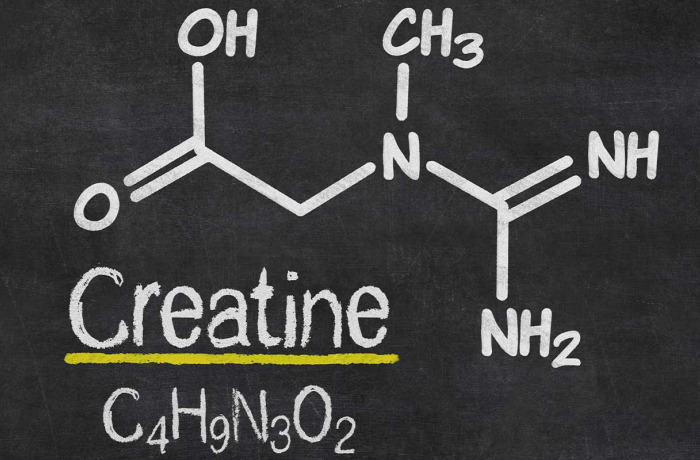 Tout savoir sur la créatine ; définition, effets, dosage !
